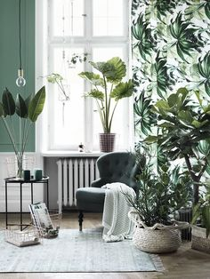 Living room with cold pastel green wall, and white paneling, large window with white revitalize your home with lush indoor plants Room With Plants, House Plants Decor, Plant Decor, Indoor Plant Wall, Indoor Plants, Colours That Go With Grey, Houseplants Safe For Cats, Decoration Plante, Green Decoration