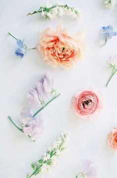 Spring floral beauty inspiration | Photo by DArcy Benincosa | 100 Layer Cake |