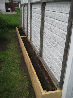 Cuc Box - Perfect for growing cucumbers and beans along the back of the shed.