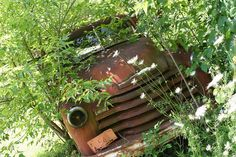 Young trees old truck