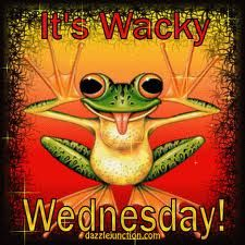 A frog thinks it's Wacky Wednesday, not Hump Day! Wednesday Greetings, Wednesday Hump Day, Happy Wednesday Quotes, Good Morning Wednesday, Wednesday Humor, Wacky Wednesday, Wonderful Wednesday, Good Morning Good Night, Good Morning Quotes