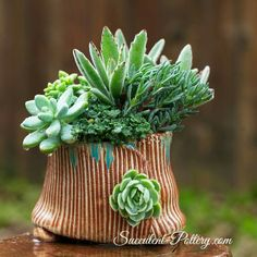 Succulent Pottery - so cute! click now for info. Pottery Pots, Slab Pottery, Ceramic Pottery, Succulent Pots, Cacti And Succulents, Flower Vases, Flower Pots, Sculptures Céramiques, Hand Built Pottery