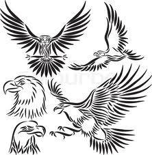 falcon vector eye - Google Search