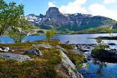 Steigtindvatnet med Steigtind i bakgrunnen     http://www.tursiden.no/steigtindvatnet-med-steigtind-i-bakgrunnen/