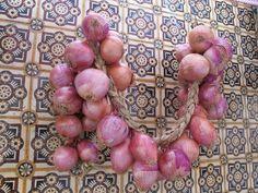 So hängen die Zwiebel überall herum. Foto: Doris Onion, Portugal, Fruit, Pictures, Onions