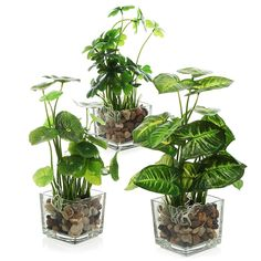 Amazon.com: MyGift Set Of 3 Artificial Plants, Faux Tabletop Greenery W/
