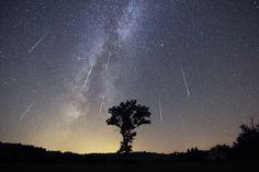 Shower of Perseid Meteors