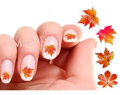 Items similar to Nail Decals, Water Slide Nail Transfer Stickers for Autumn, Fall Leaf Nail Art, Maple, Chestnut on Etsy Bright Nail Polish, Clear Nail Polish, Long Fingernails, Long Nails, Hair And Nails, My Nails, Water Nails, Trendy Nail Art, Autumn Nails