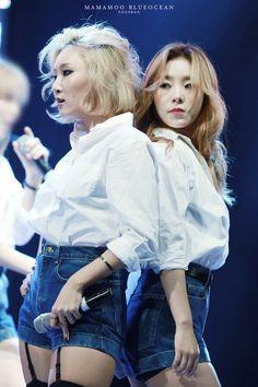 Hwasa and Wheein - Mamamoo Kpop Girl Groups, Korean Girl Groups, Kpop Girls, K Pop, Asian Woman, Asian Girl, Queens, Wheein Mamamoo, Soyeon