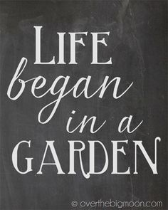 Life began in a garden-chalkboard print- Click on the download link in blue under the print image- save as!