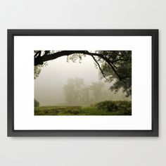 Early Morning Light Framed Art Print 21 X 15 $88