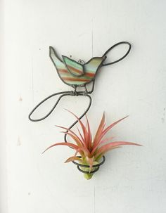 Air Plant Holder Stained glass bird on a branch wall by glassetc