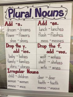 Plural Nouns - picture only