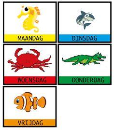 Dagen van de week : dieren onder water