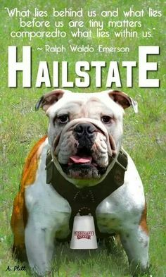 #hailstate Check this out too, Great sports stories that inform and entertain, RollTideWarEagle.com. ALL FOOTBALL ALL SEC #CFB