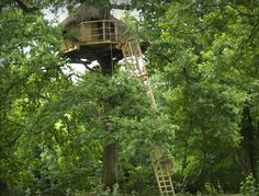 "Tree house ""Evasion"" at tree house hotel ""Cabane des Grand Lacs"" #France"