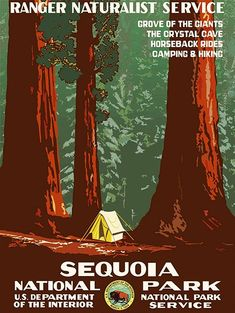 ** An vintage retro-filled travel poster featuring an illustration what camping looks like in Sequoia National Park, with the Sequoia trees towering over the Vintage Advertising Posters, Vintage Travel Posters, Vintage Advertisements, Sequoia National Park, National Parks, Wpa Posters, Poster S, Poster Wall, Retro Posters