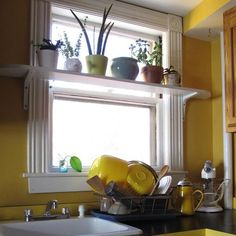 Window shelf high above kitchen sink is perfect for an apartment garden | #Horticool #ApartmentGardening #Gardening