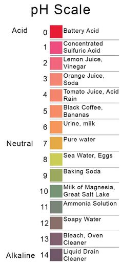 chemical reactions and the ph scale Ph is a measure of hydrogen ion concentration a measure of the acidity or  alkalinity of a solution the ph scale usually ranges from 0 to 14.