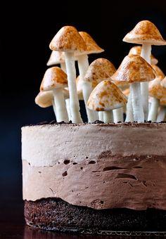 gâteau au chocolat, champignons en meringue