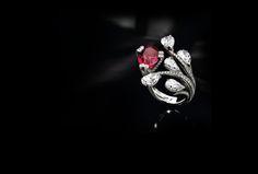SCAVIA - Ruby ring