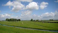 Het natuurgebied Midden Delfland in de achtertuin van Wilgenrijk