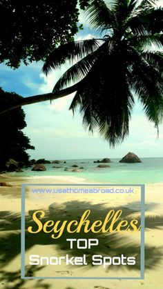 Our Top Snorkeling Spots in Seychelles. Looking for some great snorkeling spots in Seychelles? We have compiled a list of our favorite off the beach snorkel places for you. Enjoy!