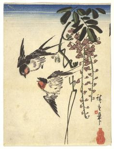 Swallows and wisteria (Fuji ni tsubame) – Objects - RISD MUSEUM