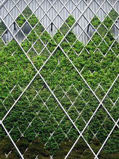F5-Jackie-Munoz-03_Green-Living-Walls