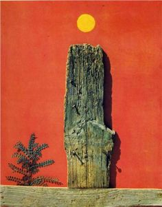 RED FOREST Max Ernst (German 1891~1976), a German painter, sculptor, graphic artist, and poet. A prolific artist, Ernst was a primary pioneer of the Dada movement and Surrealism.