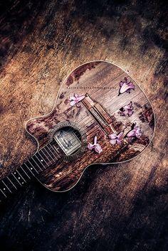 mi guitarra y flores de lapacho | Flickr: Intercambio de fotos