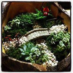 Magical Fairy Garden - Bing Images