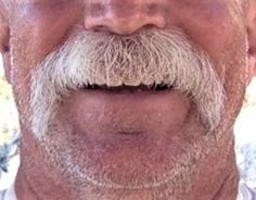 Mustache Men, All Hairstyles, Like A Lion, Daddy Bear, Beard Styles, A Good Man, Beauty And The Beast, Lips, Moustaches