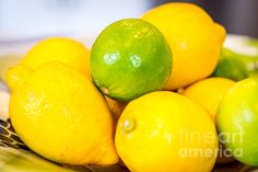 A Bowl of Vitamin C - photograph by Sabine Edrissi. Fine art prints and posters for sale. #sabineedrissi #stilllife #foodie