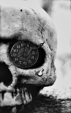 #skull #humanskull