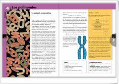 """Unidad 4 de Matemáticas de 3º de E.S.O.: """"Los polinomios"""" Fruit, Interactive Activities, Unity, United States, The Fruit"""