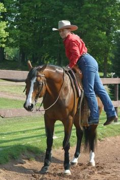 Lynn Palm on teaching your horse to stop and stand correctly, and to stand still for mounting.