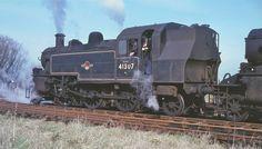 41307 Glastonbury 5.3.66 | by George of Dufton