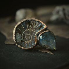 Ammonite and labradorite ring
