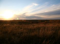 Cather Prairie Autum - Red Cloud, NE