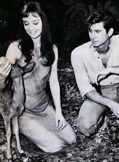 Audrey Hepburn and Anthony Perkins with a deer