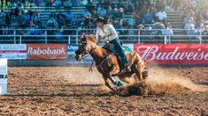Scenes from the 2018 Cattle Call Rodeo in Brawley, California USA. Barrel Racing, California Usa, Country Life, Cattle, Rodeo, Homescreen, Agriculture, Behance, Horses