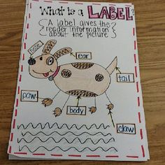 What Is A Label anchor chart