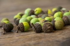wish i could figure out how to make these wool felted acorns! It looks like real acorn caps but then I don't nkow how to make the wool felted things and how to attach them (super glue?)