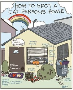 {how to spot a cat person's home}