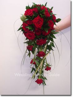 Garden Flowers - Annuals Or Perennials Bridal Bouquets Lets See Them : Wedding Bouquet Flowers Pics Rose Cascade Bouquet: Bouquet En Cascade, Cascading Wedding Bouquets, Red Bouquet Wedding, Rose Bridal Bouquet, Red Rose Bouquet, Bride Bouquets, Bouquet Flowers, Wedding Flower Guide, Red Wedding Flowers