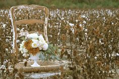 Love the cotton field, the chippy chair - how beautiful! High Cotton