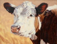 Ranger       Portrait of a Hereford by denise rich Oil ~ 16 x 20