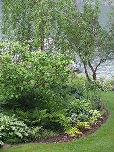 More shade garden ideas for the front yard.