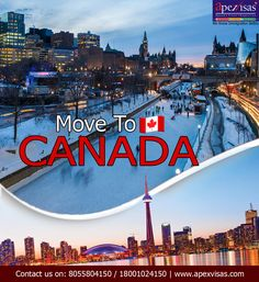 Moving To Canada, All Over The World, Denmark, New Zealand, Beautiful Places, Australia, Adventure, People, Travel
